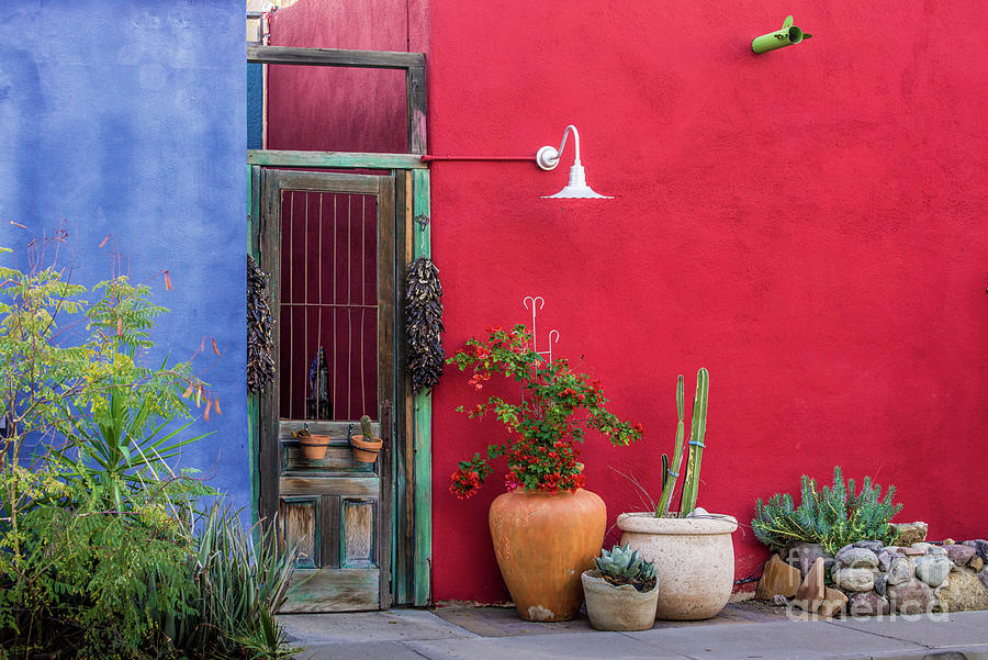 Colorful Historic Tucson Door Architecture by Gary Whitton