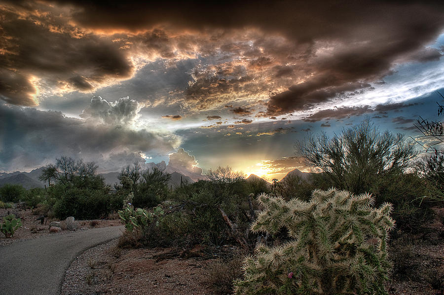 Tucson Mountain Sunset by Lynn Geoffroy