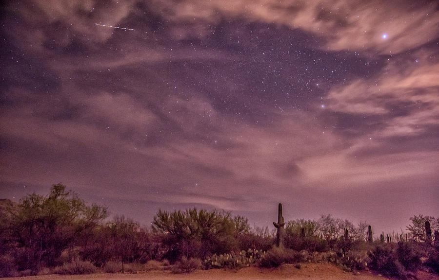 Tucson22 Photograph by Craig Applegarth