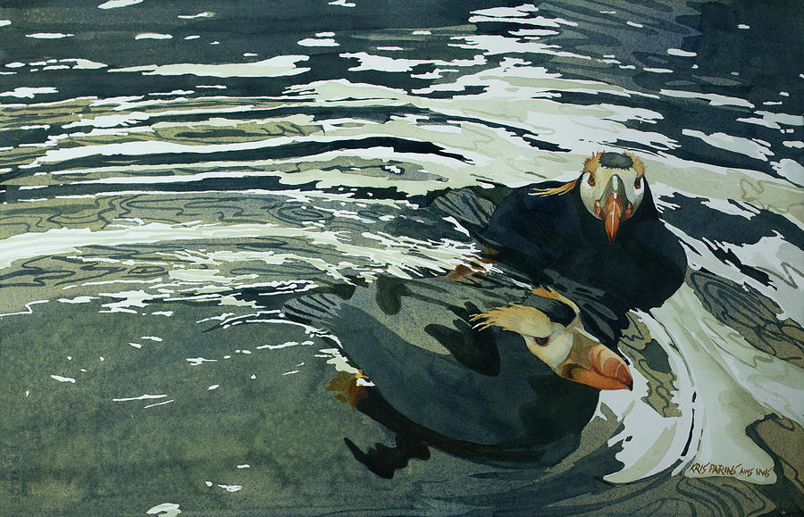 Tufted Puffins II by Kris Parins
