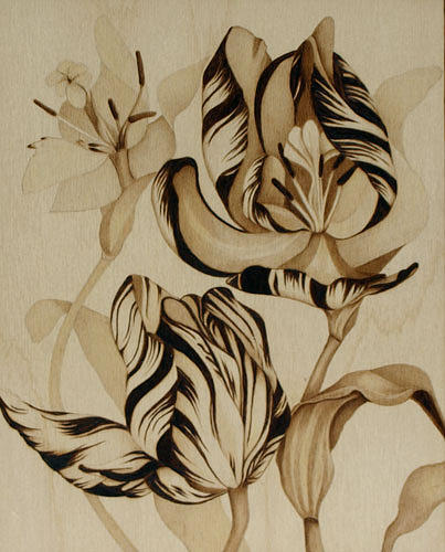 Flower Pyrography - Tulip Abstract by Cate McCauley