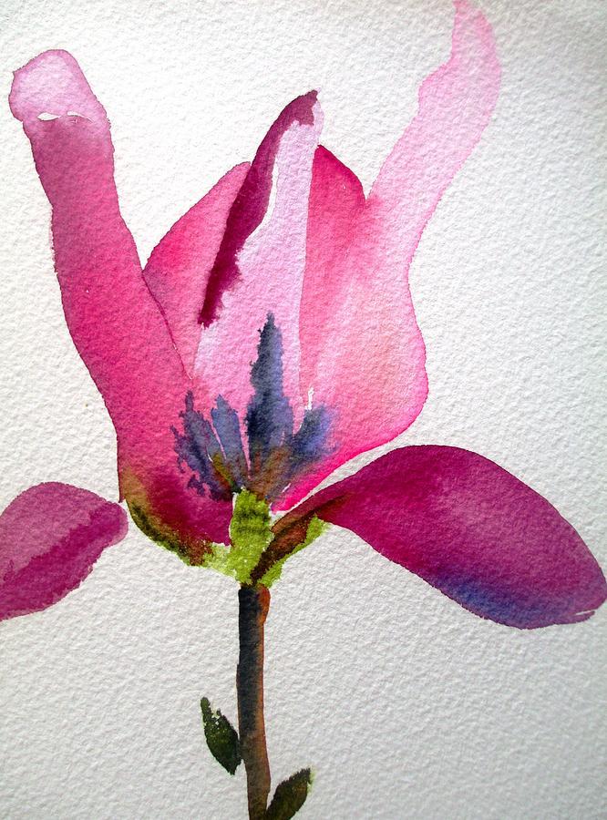 Tulip Magnolia Painting - Tulip Magnolia by Sacha Grossel