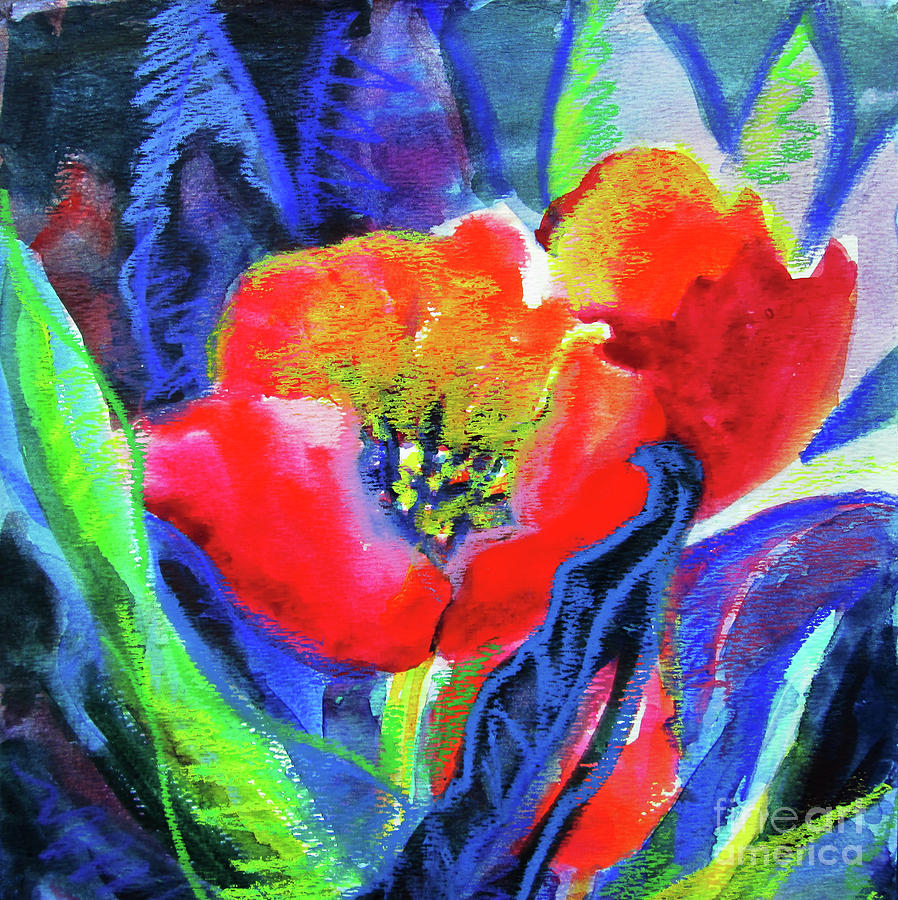 Tulip Square by Kathy Braud