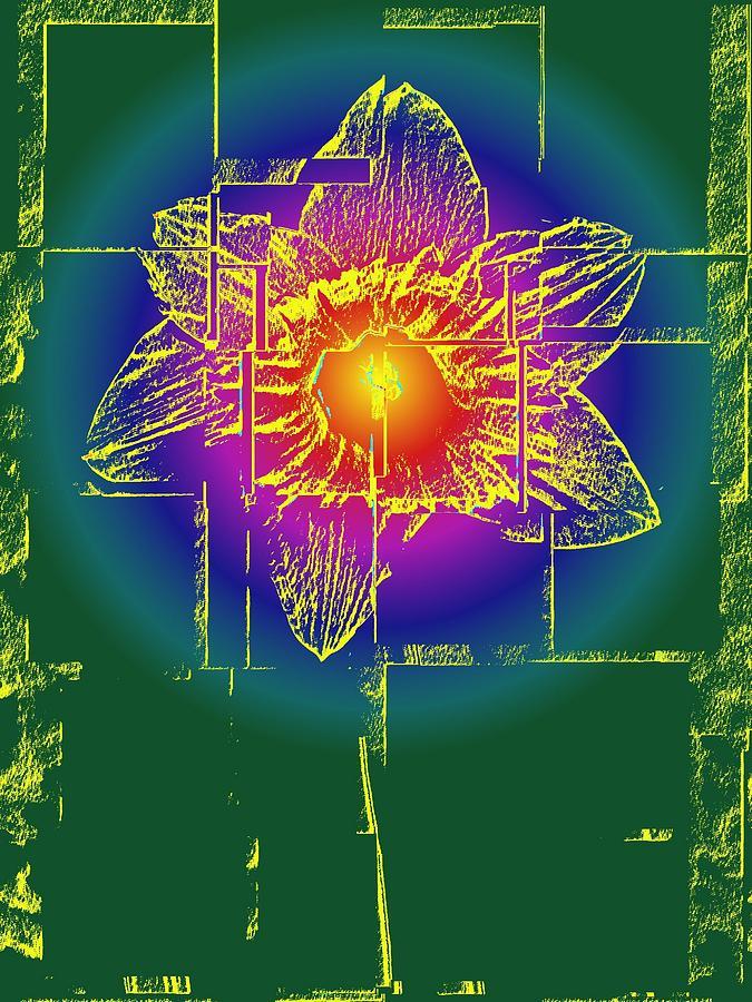 Tulip Digital Art - Tulip by Tim Allen