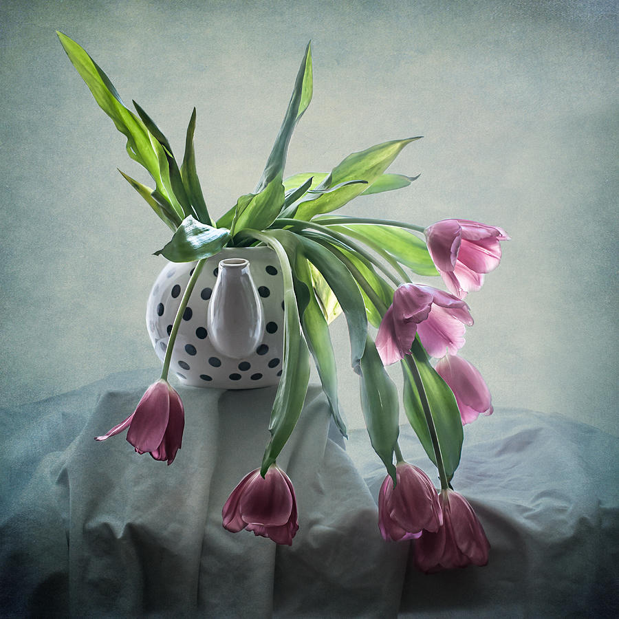 Tulip Photograph - Tulips In A Teapot  by Maggie Terlecki