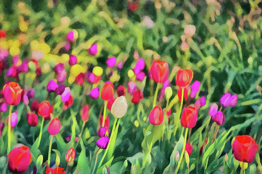 Outdoor Digital Art - Tulips. Monet style digital painting. by Michael Goyberg