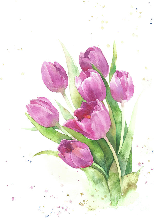 Tulips Pink Watercolor Flowers Hand Draw Painting By Mary Pashkova