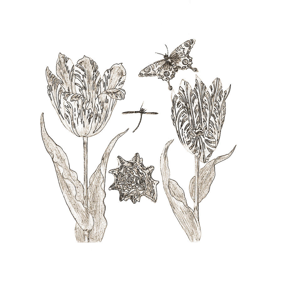 Tulips Digital Art - Tulips Vintage Botanical by Karla Beatty