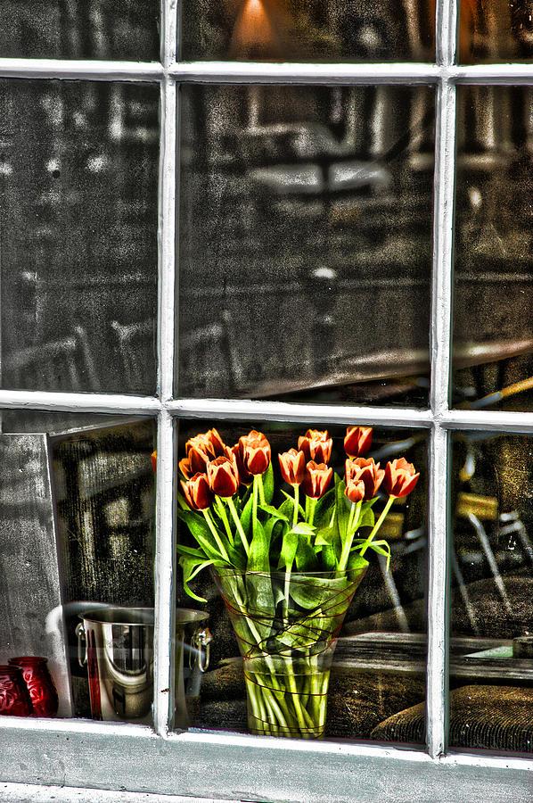 Tulips Photograph - Tulips Window by Marco Moscadelli