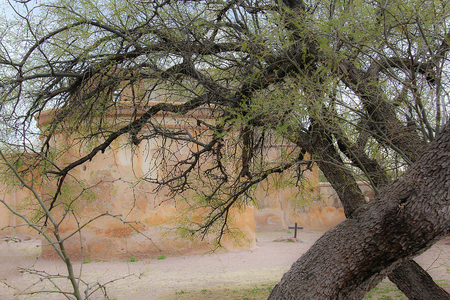 Arizona Photograph - Tumacacori Mission by Marla Craven