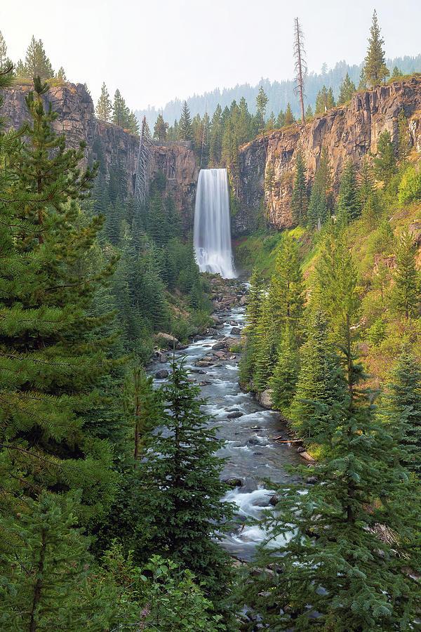 Tumalo Falls Photograph - Tumalo Falls In Bend Oregon by David Gn