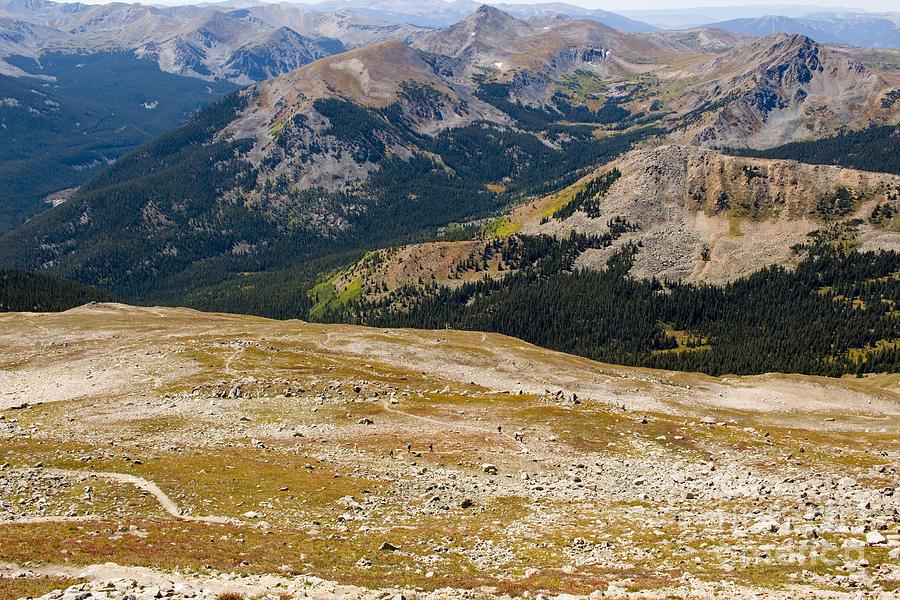 Tundra And Alpine Scenery On Mount Yale Colorado Photograph