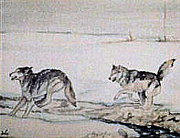 Wolves Painting - Tundra Frolic by Debra Sandstrom