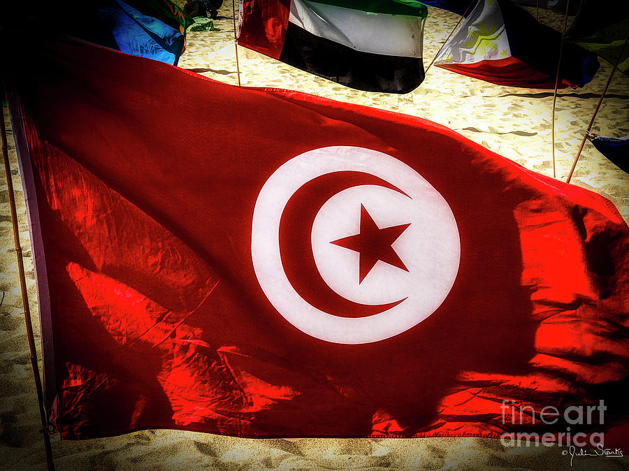 Tunisia Flag by Julian Starks