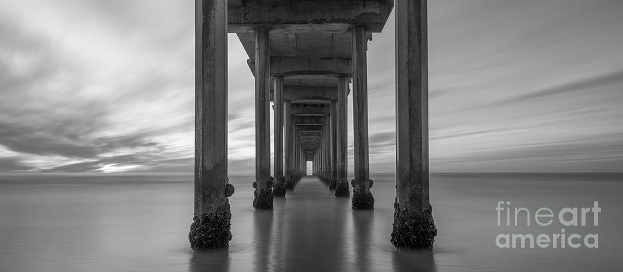 Scripps Pier Photograph - Tunnel Vision Bw  by Michael Ver Sprill