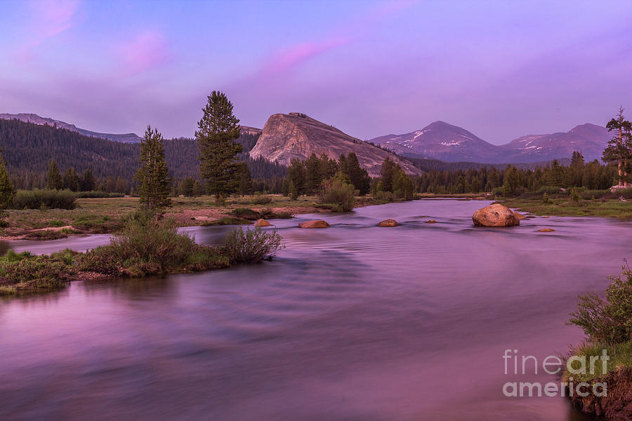 Tuolumne Meadow by Brandon Bonafede