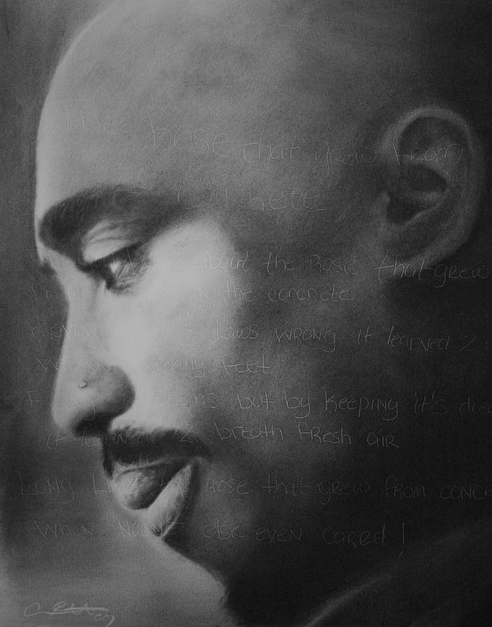 Tupac Drawing - Tupac Rose by Adrian Pickett