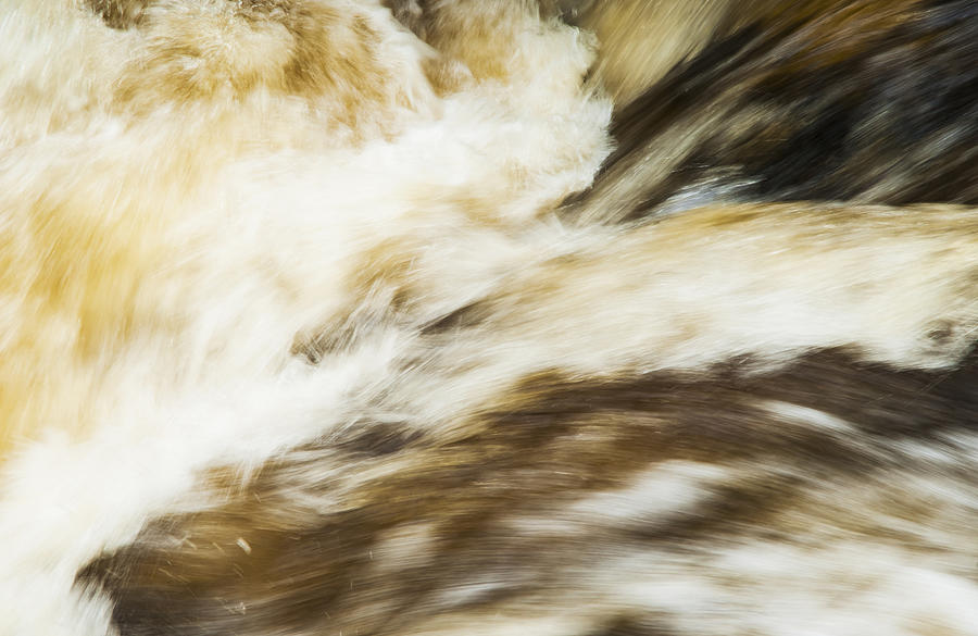 Aira Force Photograph - Turbulence Two by Paul Cullen