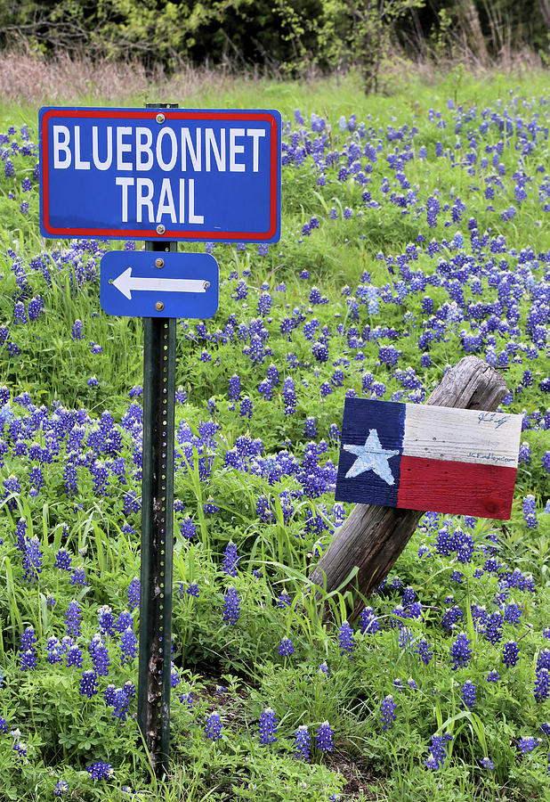 Turn Here For The The Bluebonnet Trail In Ennis Texas Photograph