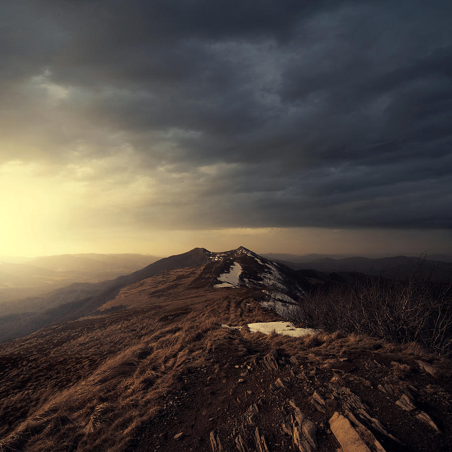 Turn To Light Photograph by Michal Karcz