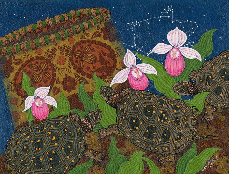 Ladyslipper Painting - Turtle - Mihkinahk by Chholing Taha