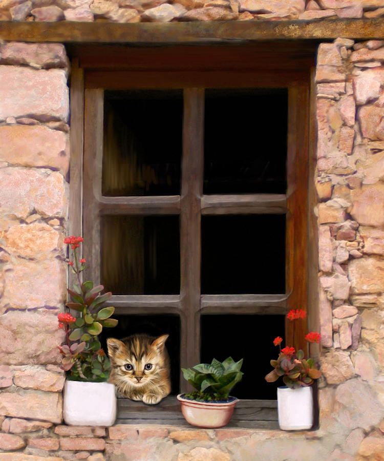 Kitten Digital Art - Tuscan Kitten In The Window by Bob Nolin