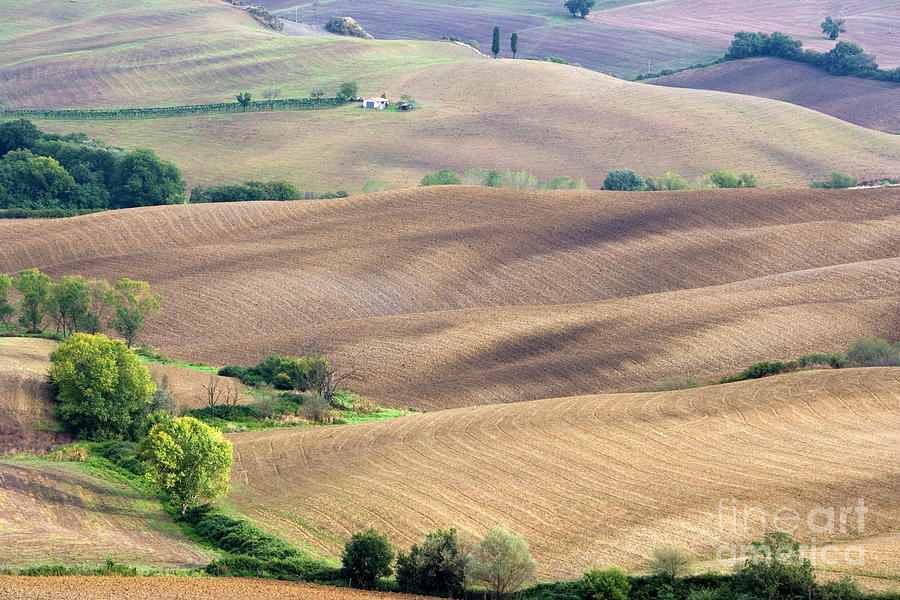 Italy Photograph - Tuscan landscape with plowed fields by Damian Davies