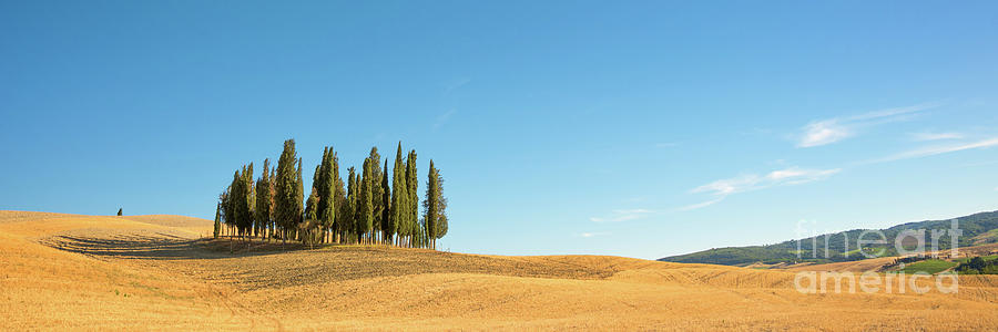 Tuscany Photograph - Tuscan Panorama by Delphimages Photo Creations