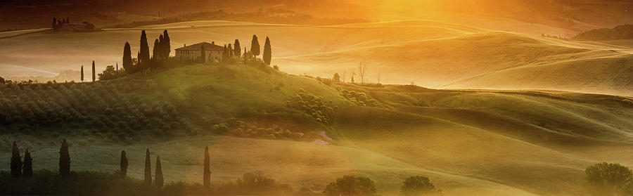 Italy Photograph - Tuscany In Golden by Evgeni Dinev