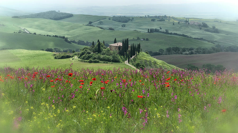Tuscany in Spring Photograph by Jenni Alexander
