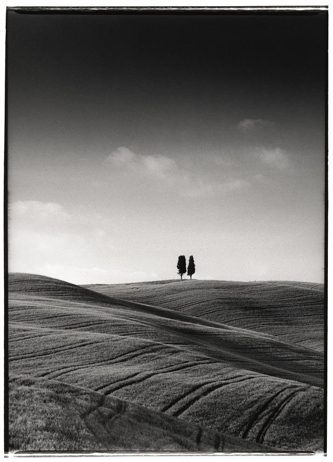 Tuscany Photograph - Tuscany Twin Cypresses by Michael Hudson