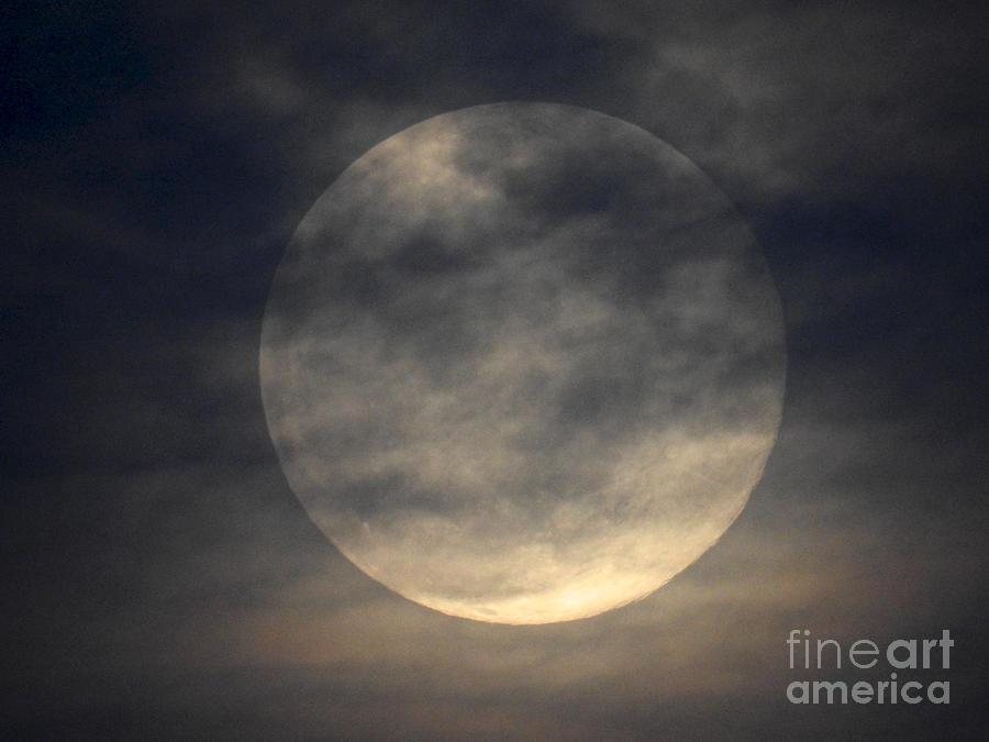 Twas the night before a full moon by Kate Purdy
