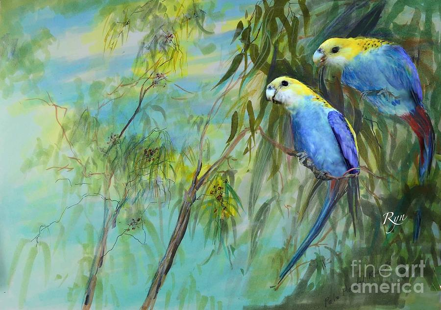Two pale-faced rosellas by Ryn Shell
