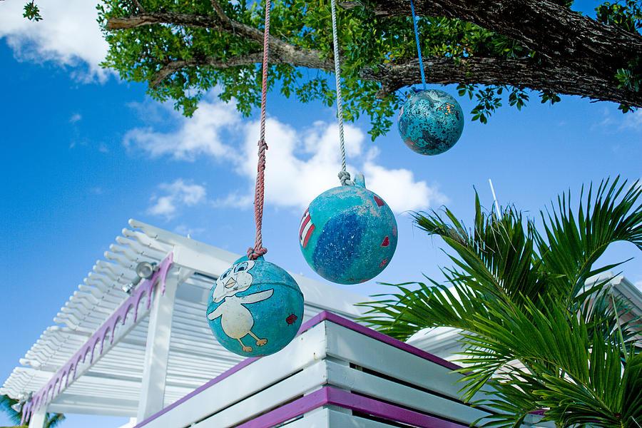 Bahamas Photograph - Tweety by Richard Steinberger