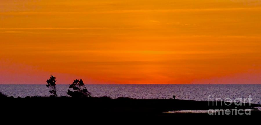 Sunset Photograph - Twilight At Pamlico Sound by Jean Wright