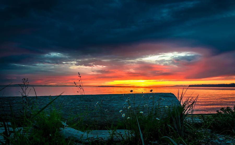 Sun Photograph - Twilight by Blanca Braun