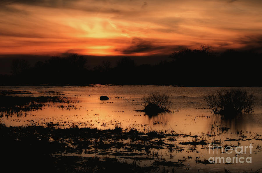 Colorful Photograph - Twilight by Gaby Swanson