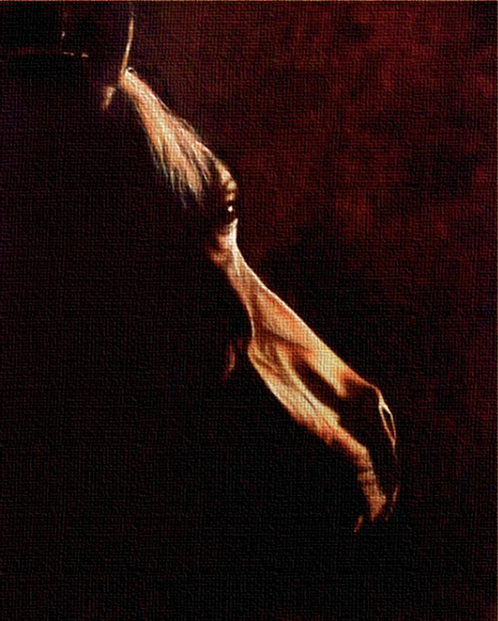 Horse Painting - Twilight by Pablo Ritter