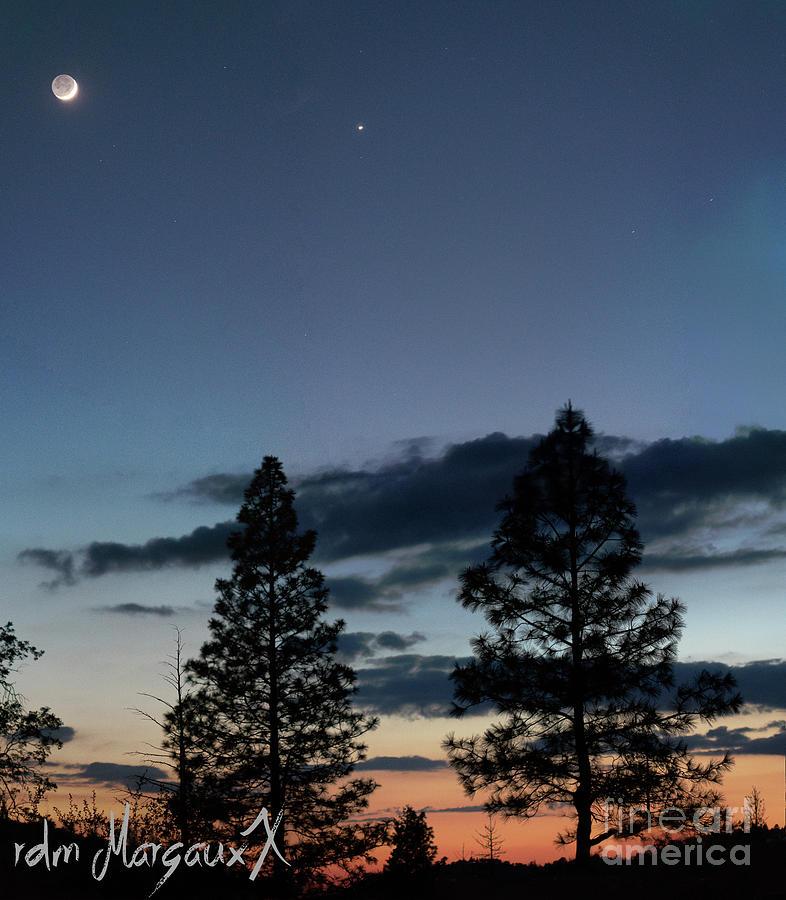 Twilight Quarter Moon Photograph