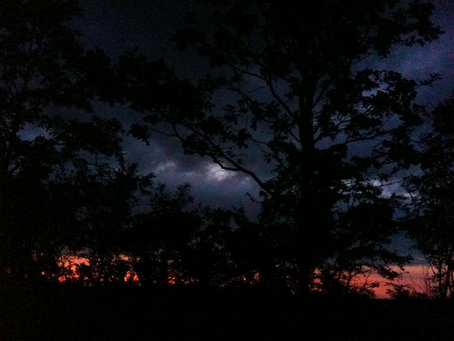 Night Photograph - Twilight by Sara Efazat