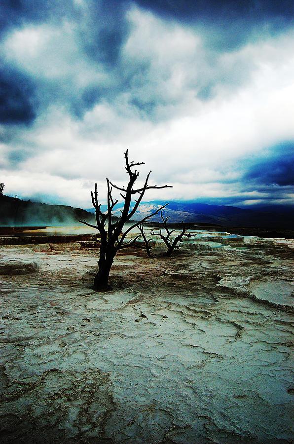 Landscape Photograph - Twilight by Sarah Bennett