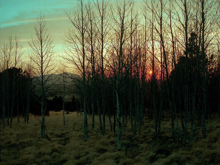 Twilight by Stephen Andersen