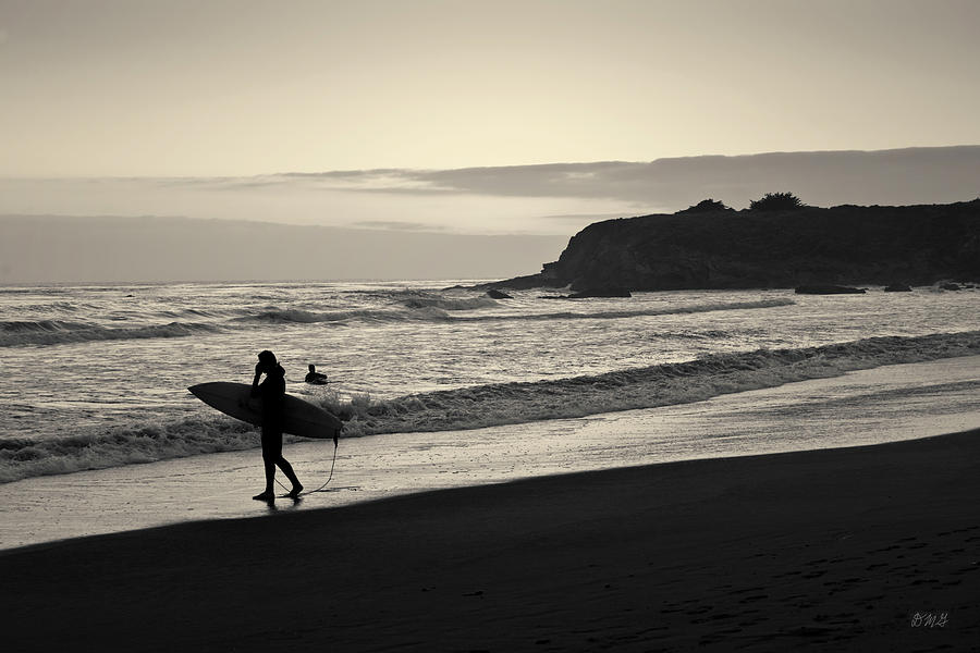 Surfing Photograph - Twilight Surfers Toned by David Gordon