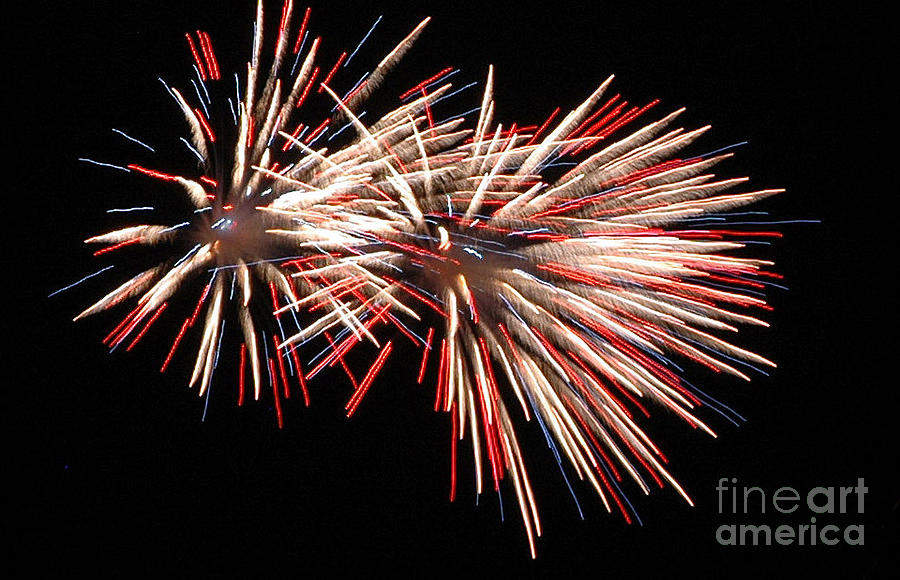 Holidays Photograph - Twin Burst by Norman  Andrus