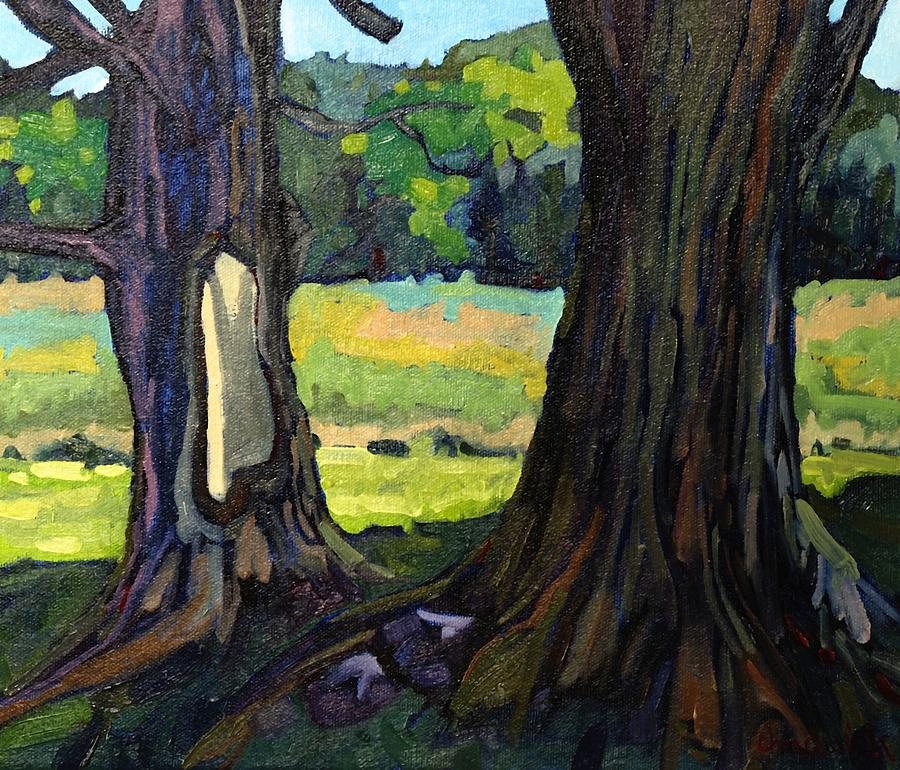 Sugar Painting - Twin Maples by Phil Chadwick