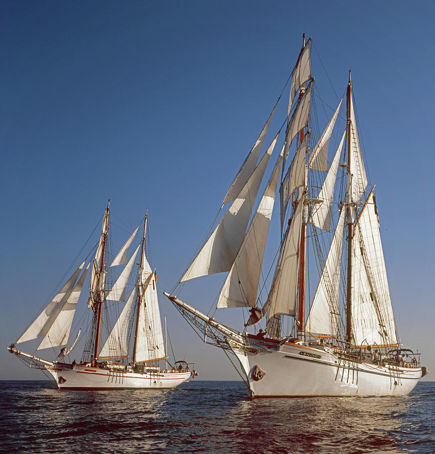 Twin Tallships at Sea by Cliff Wassmann