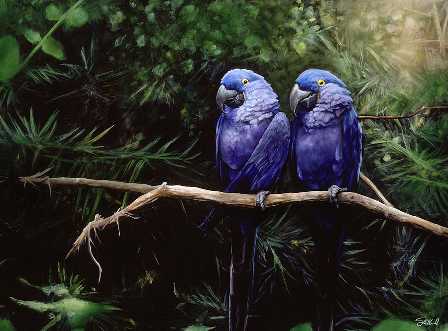 Macaws Painting - Twins by Steve Goad