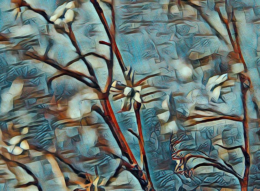 Nature Digital Art - Twist On A Masterpiece 2 by Rhonda Barrett