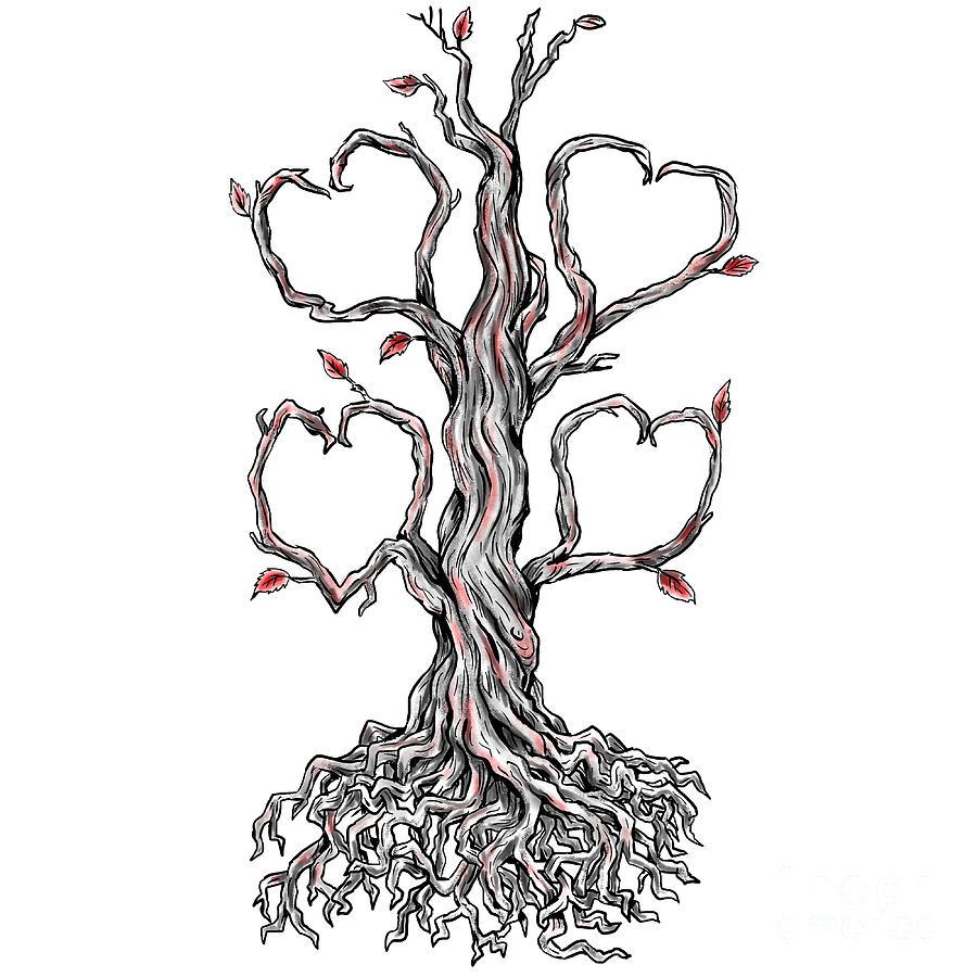 Oak Tree With Roots Sketch Twisted Oak Tree Heart...