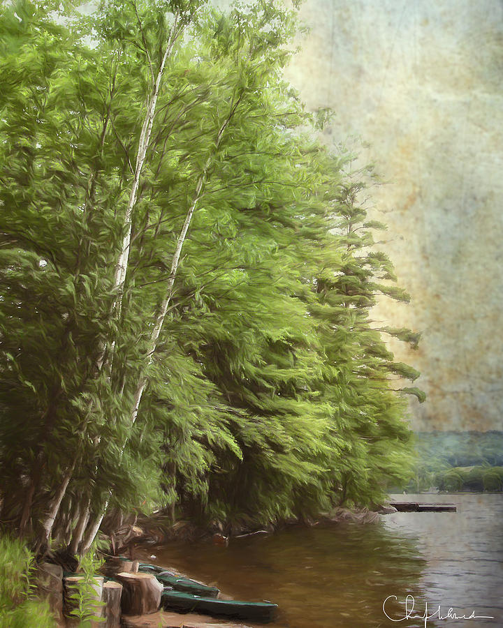 Two Birches by Christopher Meade